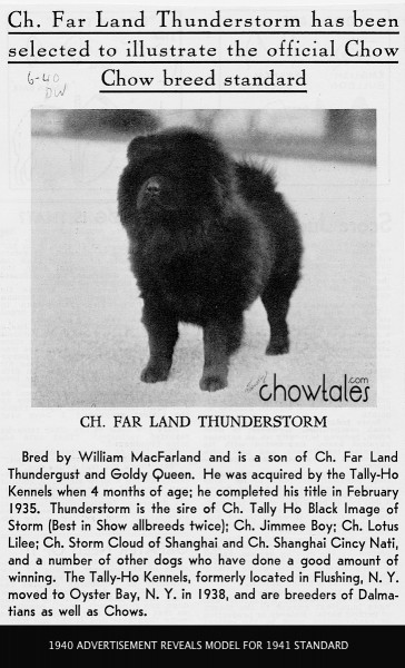 1940 CHOW STANDARD MODEL Tally Ho Kennels Far Land Thunderstorm