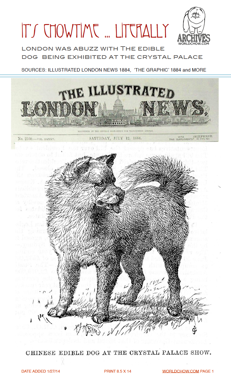 1884 FOCUS ON EDIBLE DOG OF CHINA - ChowTales