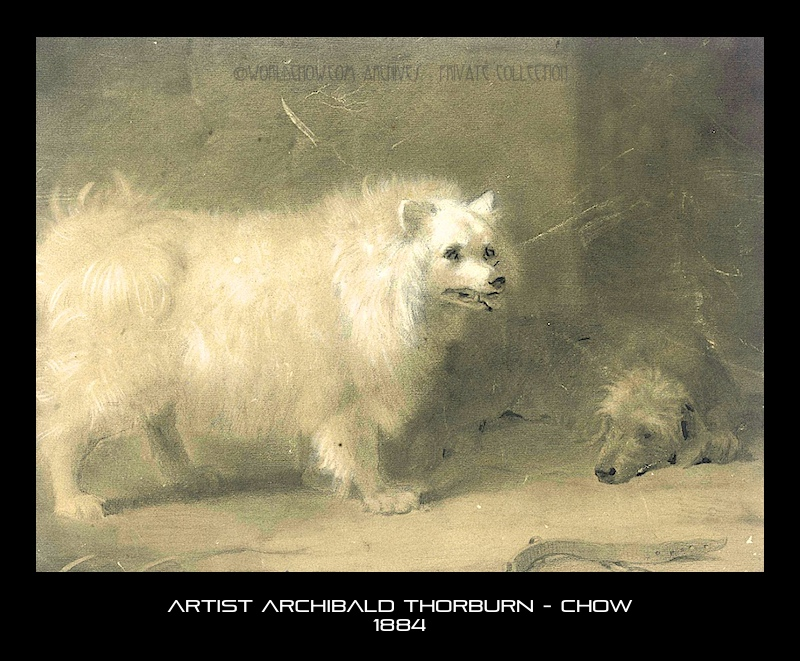 Archibald Thorburn - Chow 1884