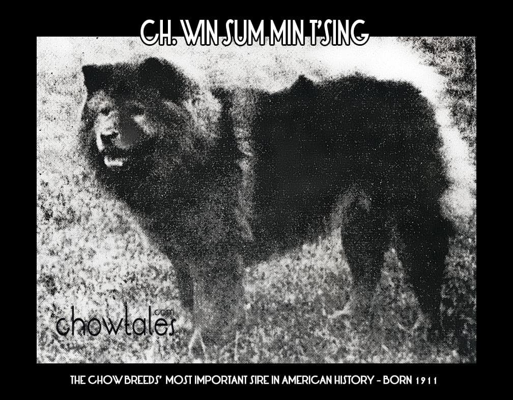 CH. WINSUM MIN T'SING2