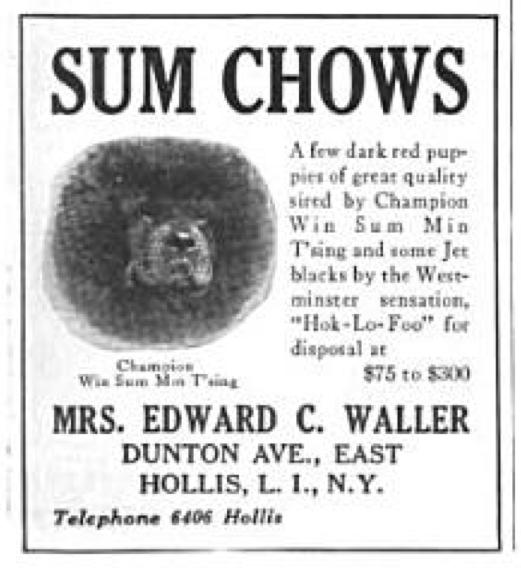CH. WIN SUM MIN'TSING