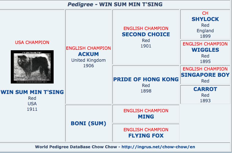 min tsing pedigree