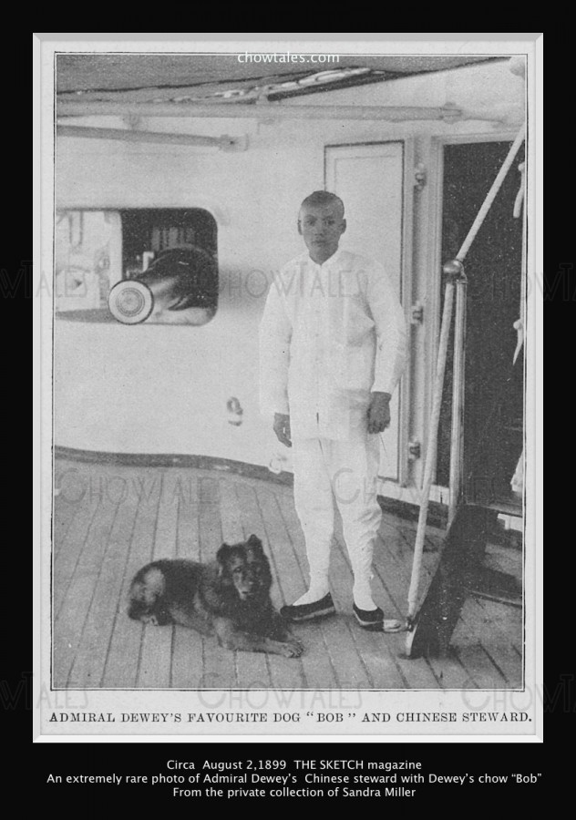 1899 Aug 2 THE SKETCH Admiral Deweys steward from our own collection