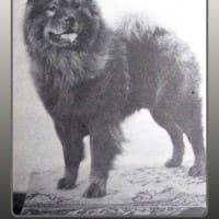 1934 NATIONAL WINNER.jpg 12015-03-20