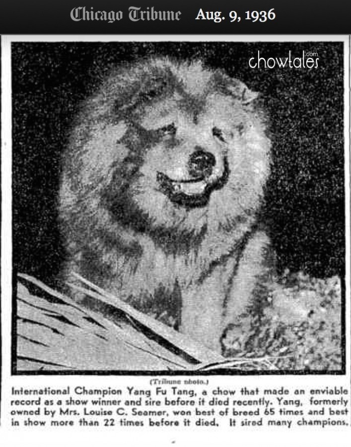 Yang Fu Tang August 1936 article and photo