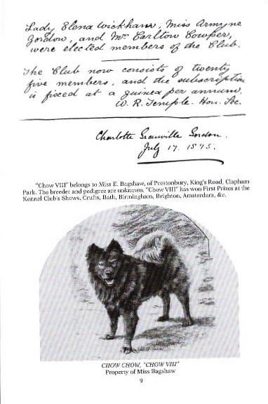 handwritten chow standard pg 2 - Version 4