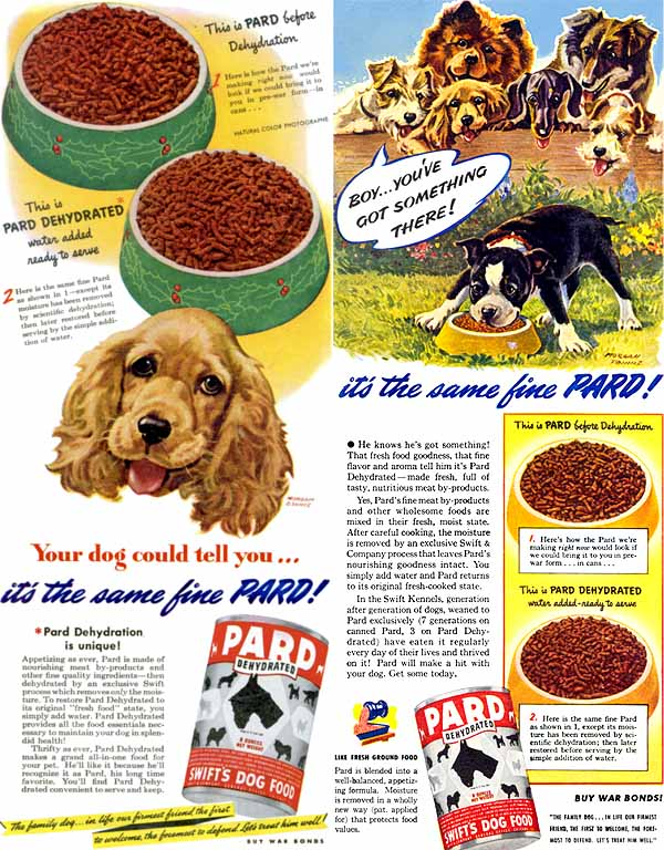 pard dog food morgan dennis