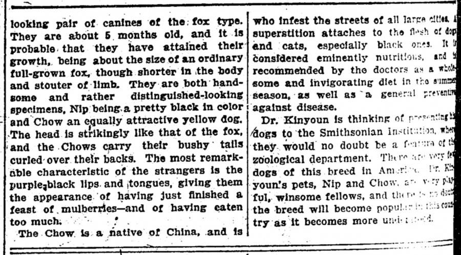 1901 NIP AND CHOW CHINESE IMPORTS DR KINYOUN 12016-03-22