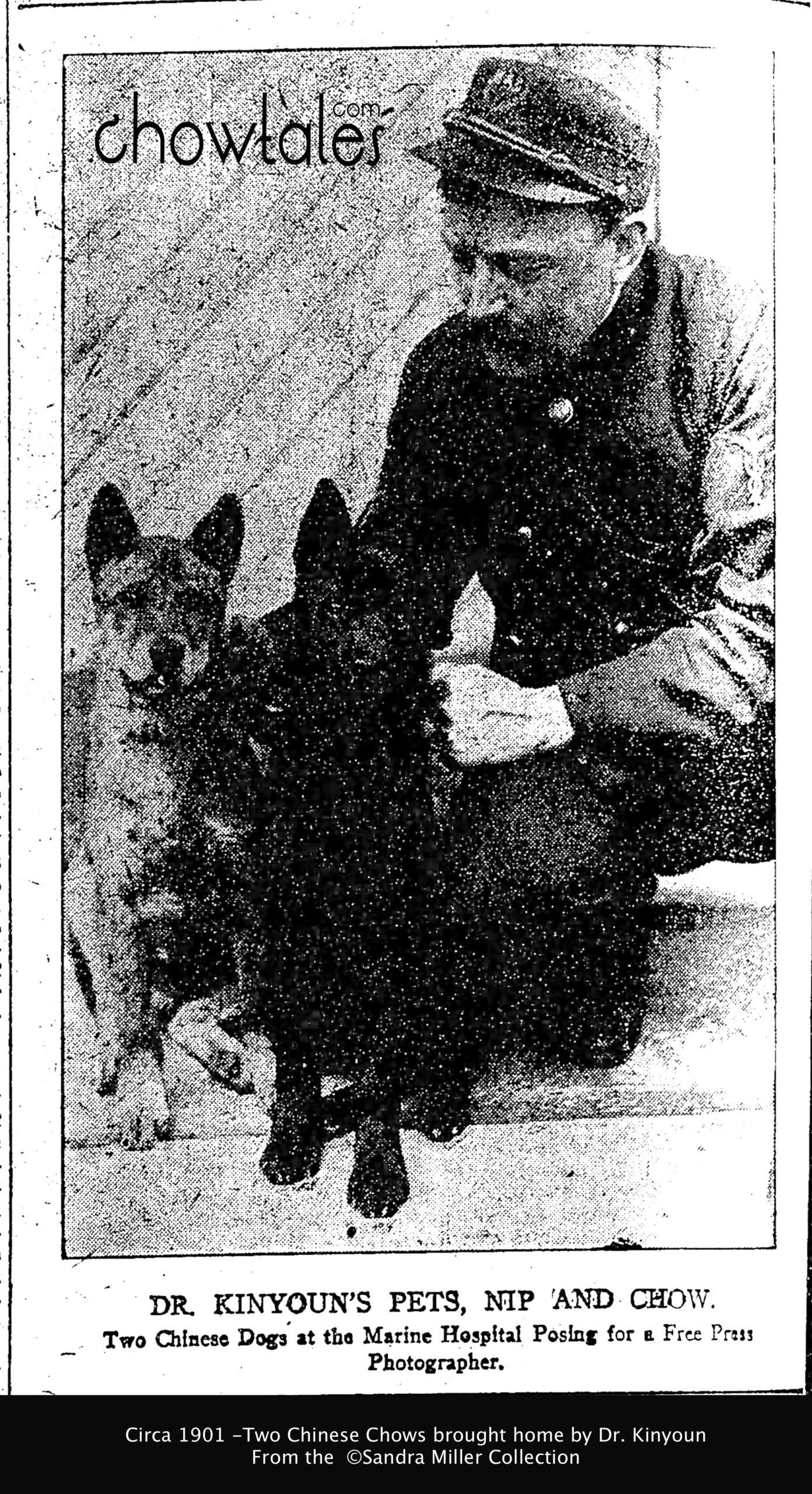 DR KINYON 1901 BRINGS 2 CHINESE DOGS TO MARINE HOSPITAL