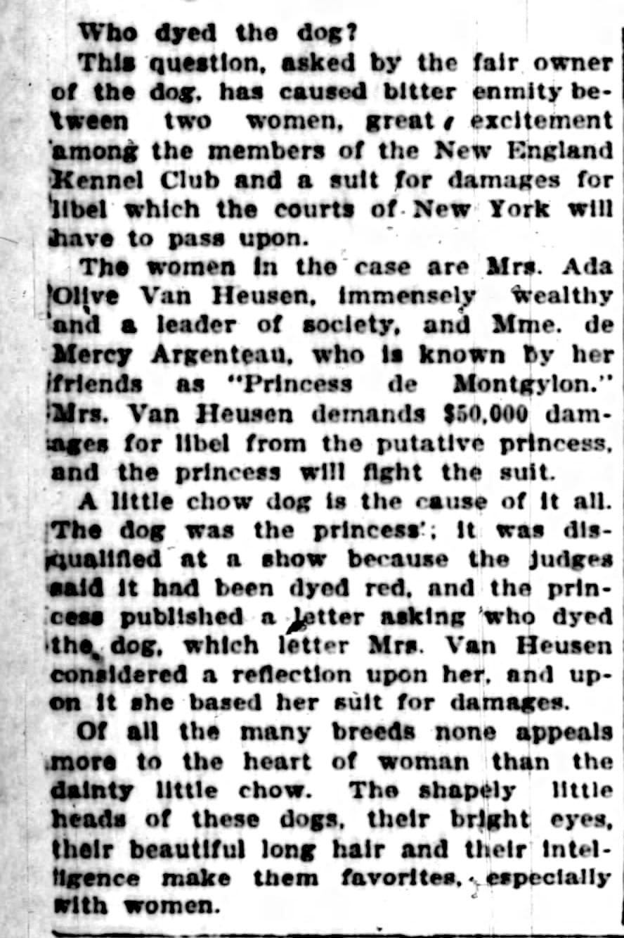 A.O Van Heusen Who Dyed Chin Chino Princess 1907