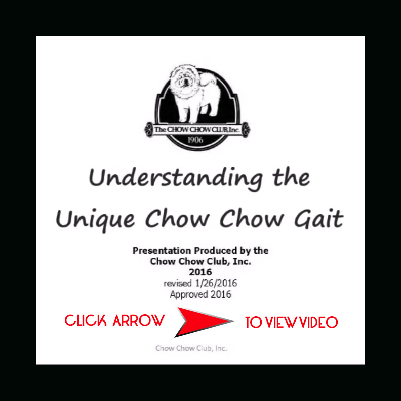 chowtales unique chow gai ARROWt
